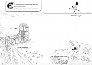 modelo ilustración naturaleza
